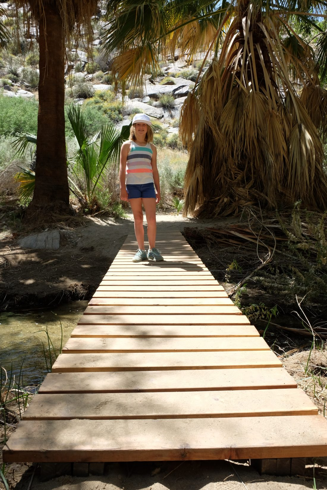 Crossing over the stream. Palm Canyon trail. Palm Springs