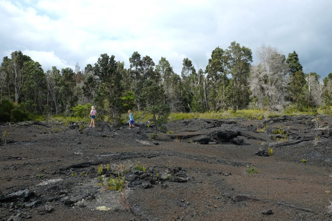 Exploring the lava fields