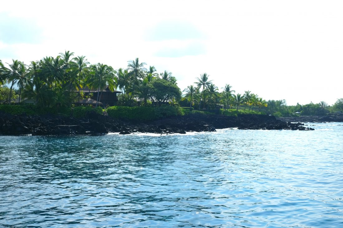First snorkel stop along the South Kona shoreline