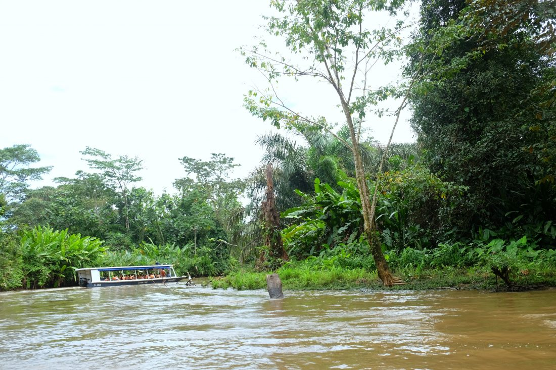 River boat through the canals on our way to Tortuguero. Costa Rica