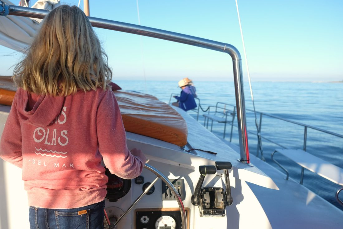 Steering the boat and looking for whales