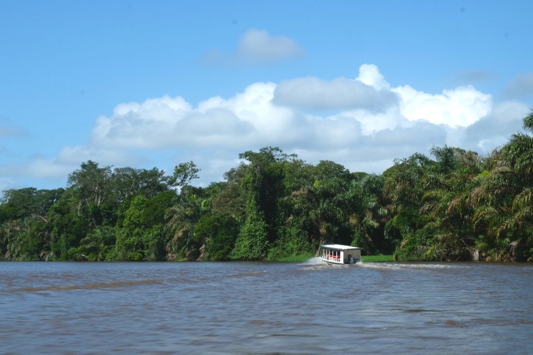 Heading out in the canals in search of animals. Tortuguero National Park. Costa Rica