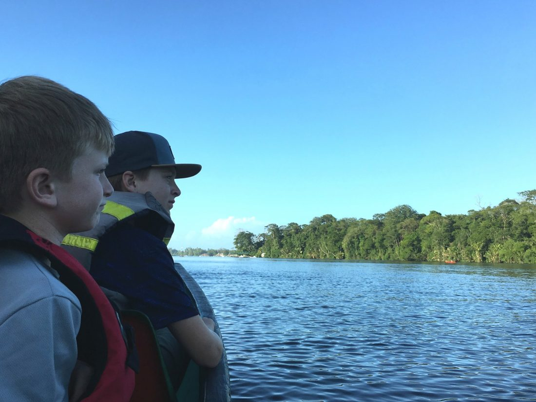 Looking for jungle animals. Tortuguero Costa Rica
