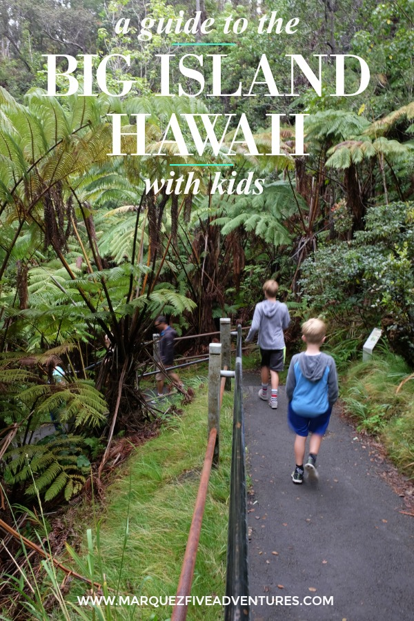 Lots of kid-friendly things to do, places to eat, and where to stay on the Big Island of Hawaii!  Big Island | Hawaii | Family-Friendly | Kid-Friendly | Volcanoes National Park | ATV | Helicopter Tour | Hawi | Hilo | Snorkeling | Night Snorkel | Kohala Coast |