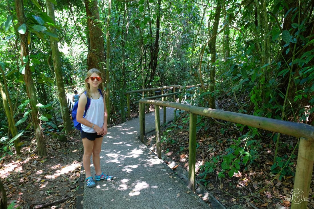 Hiking in Manuel Antonio Park