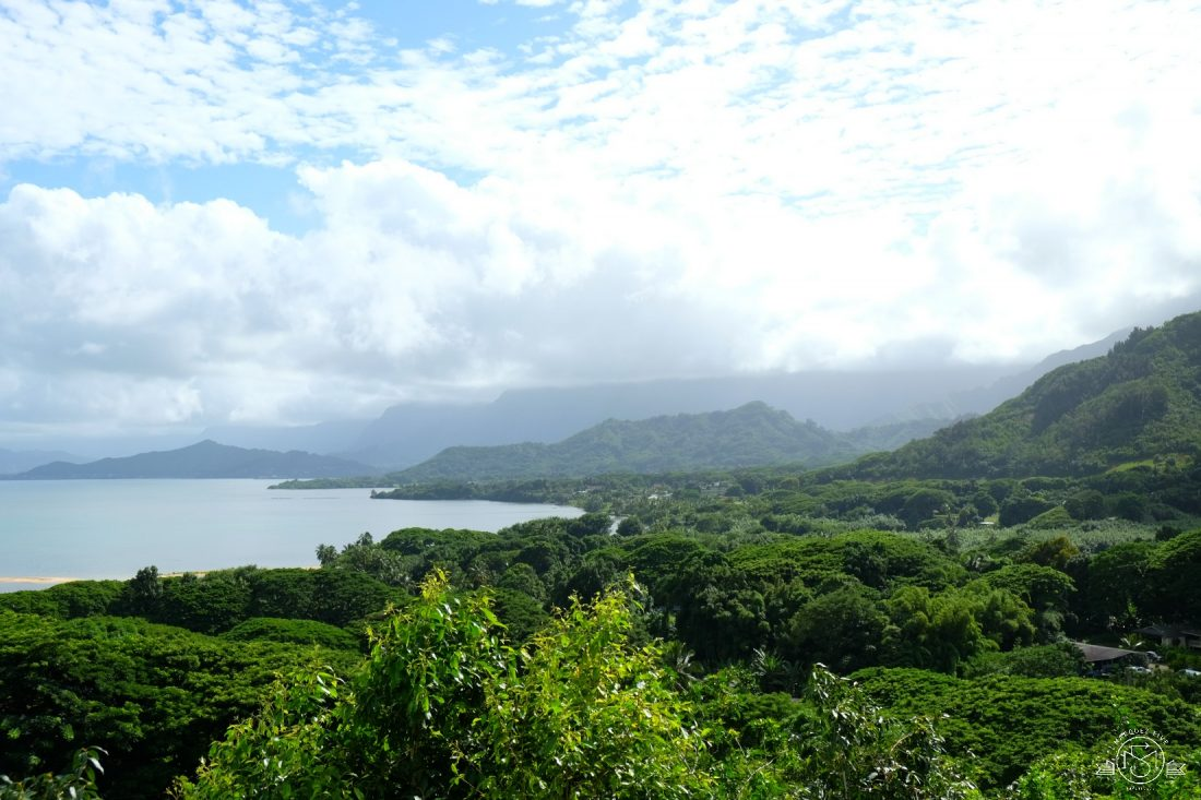 View from the hills of Kualoa Ranch