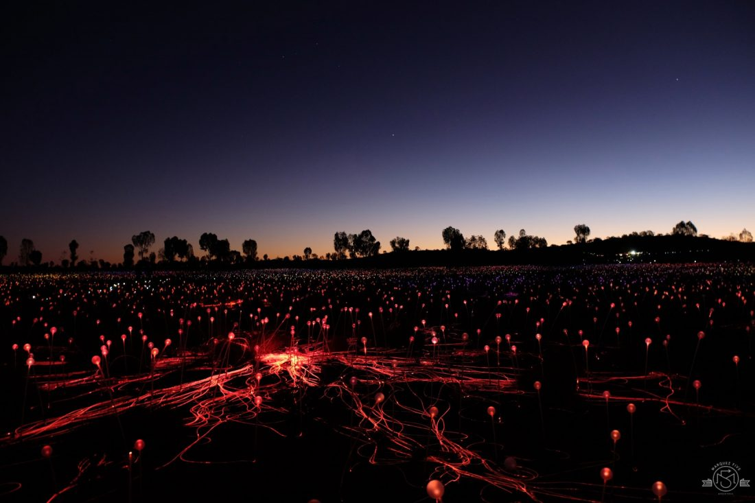 Field of Lights - 50,000 colored lights on display through December 2020. Uluru Australia