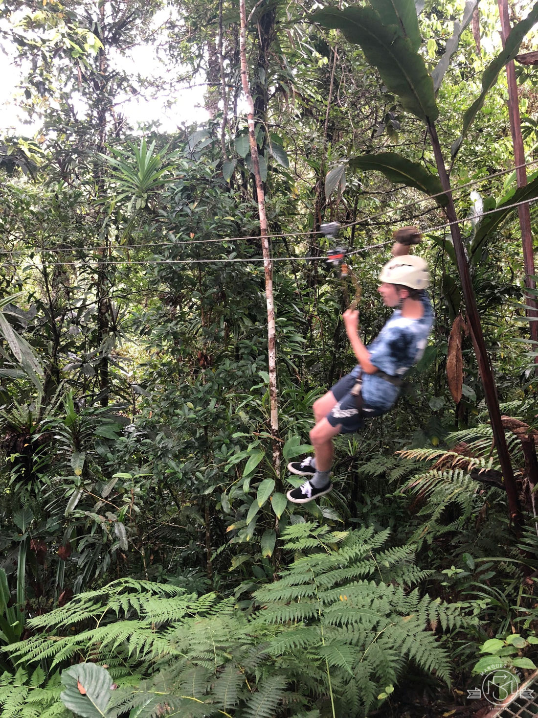 Zipping through the rainforest