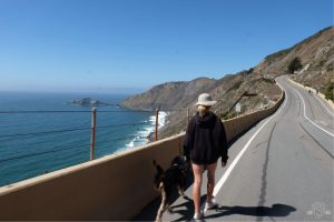 Devil's Slide Trail is dog, scooter, bike, and equestrian friendly! Pacifica, California