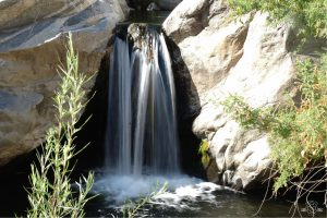 This is the decoy waterfall! Tahquitz Falls Hike Palm Springs CA