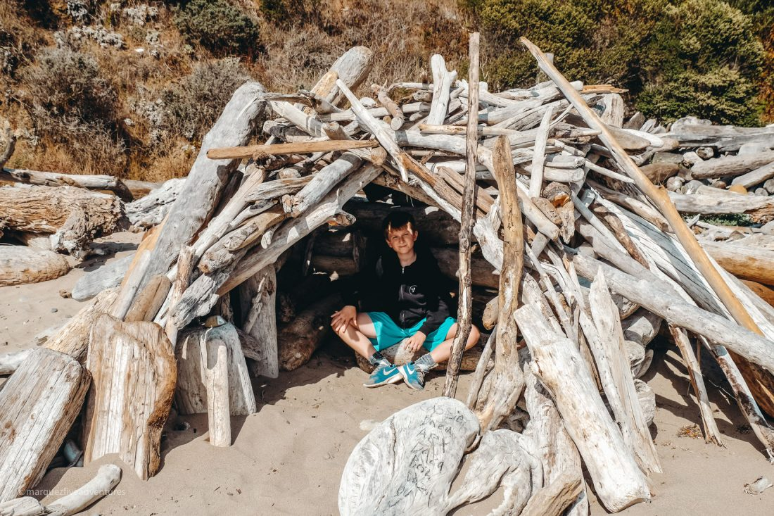 The beach was full of bleached driftwood and cool forts! Schooner State Beach. Bowling Ball Beach. Point Arena Califonrnia. Mendocino County