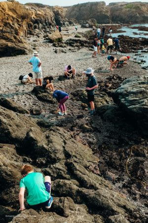 The crowds at Glass Beach. Fort Bragg, California. Mendocino County