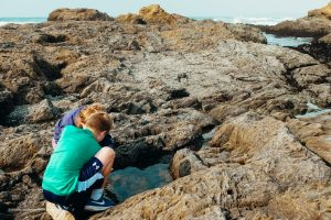 Checking out the tide pools at Glass Beach. Fort Bragg, California. Mendocino County