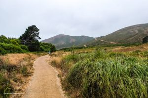 Heading through the valley towards the beach . Tennessee Valley Trail. Marin California