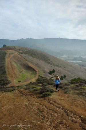 Coming back via the Timigtac Trail. Mori Point Trail. Pacifica, California