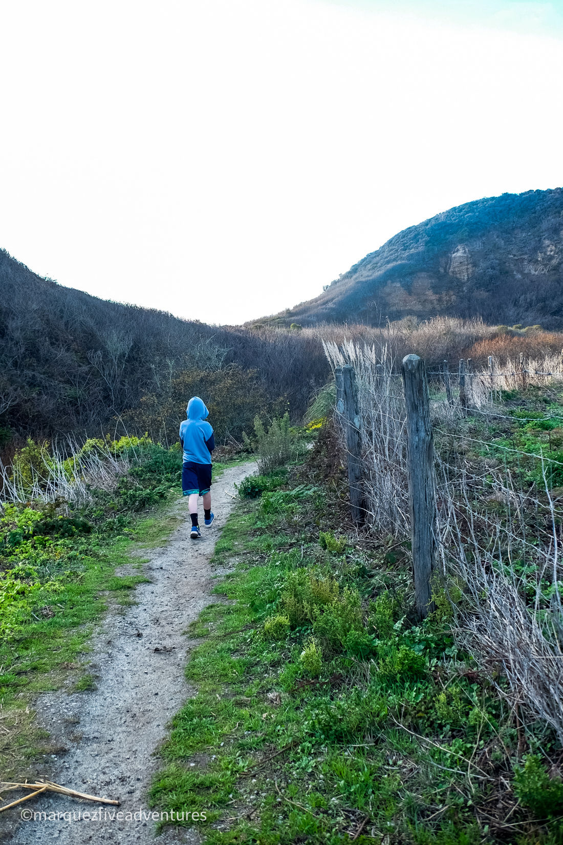 Hiking through a valley - here the trail switches to dirt. Cowell-Purisima Trail. Half Moon Bay, California