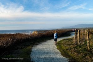 The trail is nice & flat that's mostly gravel - great for a post-rain hike. Cowell-Purisima Trail. Half Moon Bay, California