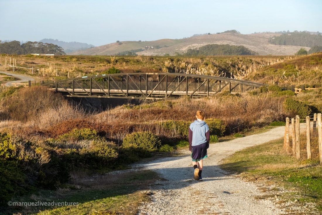 Several bridges to cross along the way. Cowell-Purisima Trail. Half Moon Bay, California