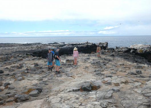 Walking along the lava rocks on South Plaza Island. Galapagos