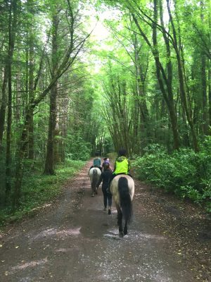 Horseback riding on the trails that wind through the grounds at Ashford Castle. County Mayo, Cong Ireland