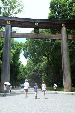 Torii Gate at the Meiji-Jingu Shrine. Tokyo Japan