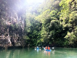 Kayaking among the mangroves and limestone cliffs in Krabi. Thailand