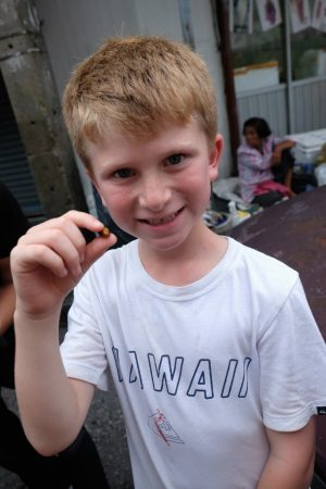 Getting ready to eat a silk worm