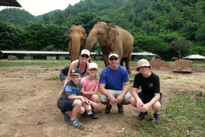 Just hanging out with a bunch of elephants!