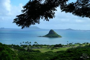 Chinaman's Hat - Also known as Mokoli'i Island!