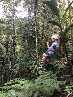 Zipping through the rainforest