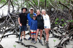 Exploring the mangroves at Cape Tribulation