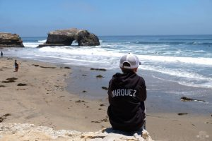 A great spot to admire the view of Natural Bridges State Beach. Santa Cruz, California