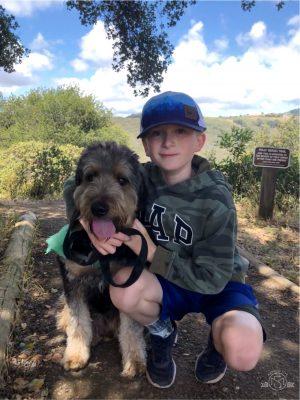 Dog Friendly Pulgas Ridge. San Carlos