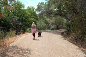 Starting off on Lake Road Trail to Waterdog Lake. Belmont California