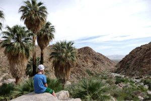 Admiring the views. Fortynine Palms Joshua Tree National Park