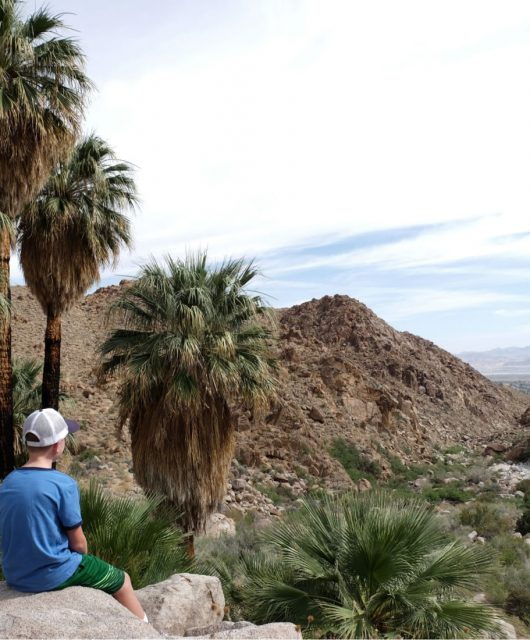 Admiring the views. Fortynine Palms Joshua Tree National Park