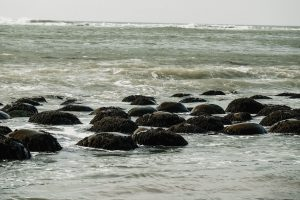 The beach is full of these perfectly round rocks - that look just like bowling balls! Schooner State Beach. Point Arena, California. Mendocino County