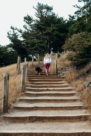 Land's End Trail in San Francisco, California