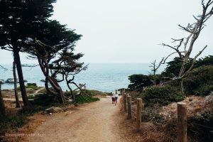 Trail down to the Sutro Baths. Land's End San Francisco, California