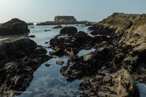 So much more to enjoy than glass at Glass Beach. Fort Bragg, California. Mendocino County