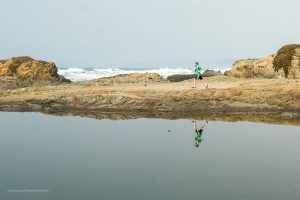 In a hurry to check everything out! Glass Beach. Fort Bragg California. Mendocino County