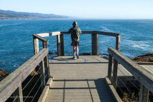Whaler's Overlook. Pigeon Point Lighthouse. Pescadero, California. San Mateo County