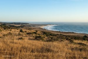 Looking south towards Año Nuevo. Wilbur's Watch hike. Pescadero, California. San Mateo County