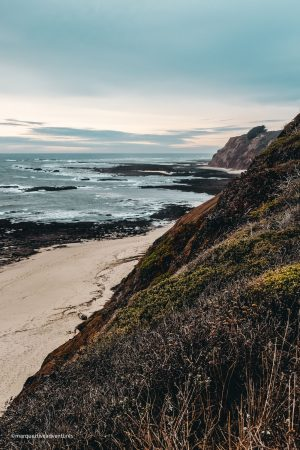 More bluffs & ocean views. Pillar Point. Half Moon Bay, California