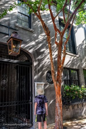 We loved reading about the history of homes and buildings posted right out front. Charleston, South Carolina