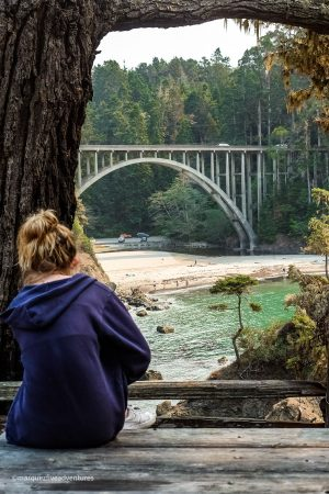 Looking out at Russian Gulch Bridge from the Headland's Trail. Russian Gulch State Park. Mendocino, California